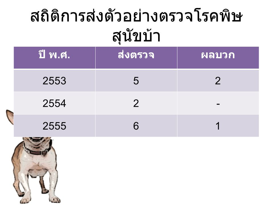 สถิติการส่งตัวอย่างตรวจโรคพิษ สุนัขบ้า ปี พ. ศ. ส่งตรวจผลบวก 255352 25542- 255561