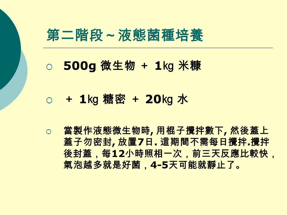 第二階段~液態菌種培養  500g 微生物 + 1 ㎏ 米糠  + 1 ㎏ 糖密 + 20 ㎏ 水  當製作液態微生物時, 用棍子攪拌數下, 然後蓋上 蓋子勿密封, 放置 7 日.