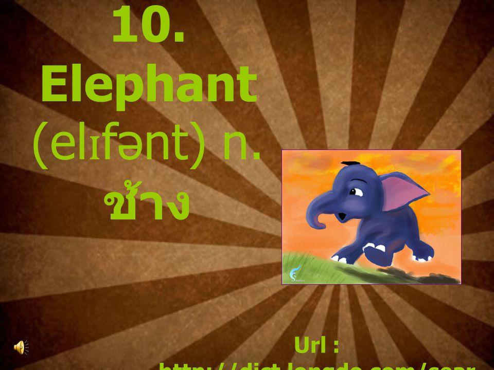 10. Elephant (el ɪ fənt) n. ช้าง Url : http://dict.longdo.com/sear ch/elephant