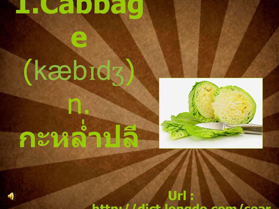 1.Cabbag e (kæb ɪ d ʒ ) n. กะหล่ำปลี Url : http://dict.longdo.com/sear ch/Cabbage