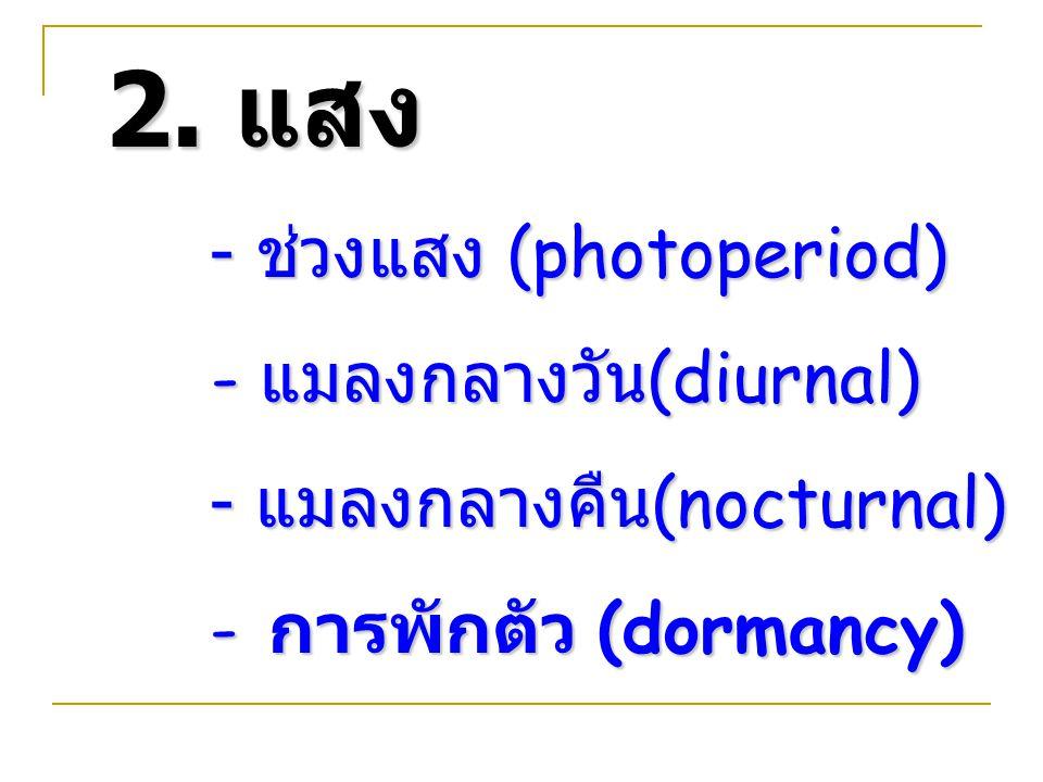 2. แสง - ช่วงแสง (photoperiod) - แมลงกลางวัน (diurnal) - แมลงกลางวัน (diurnal) - แมลงกลางคืน (nocturnal) - การพักตัว (dormancy)
