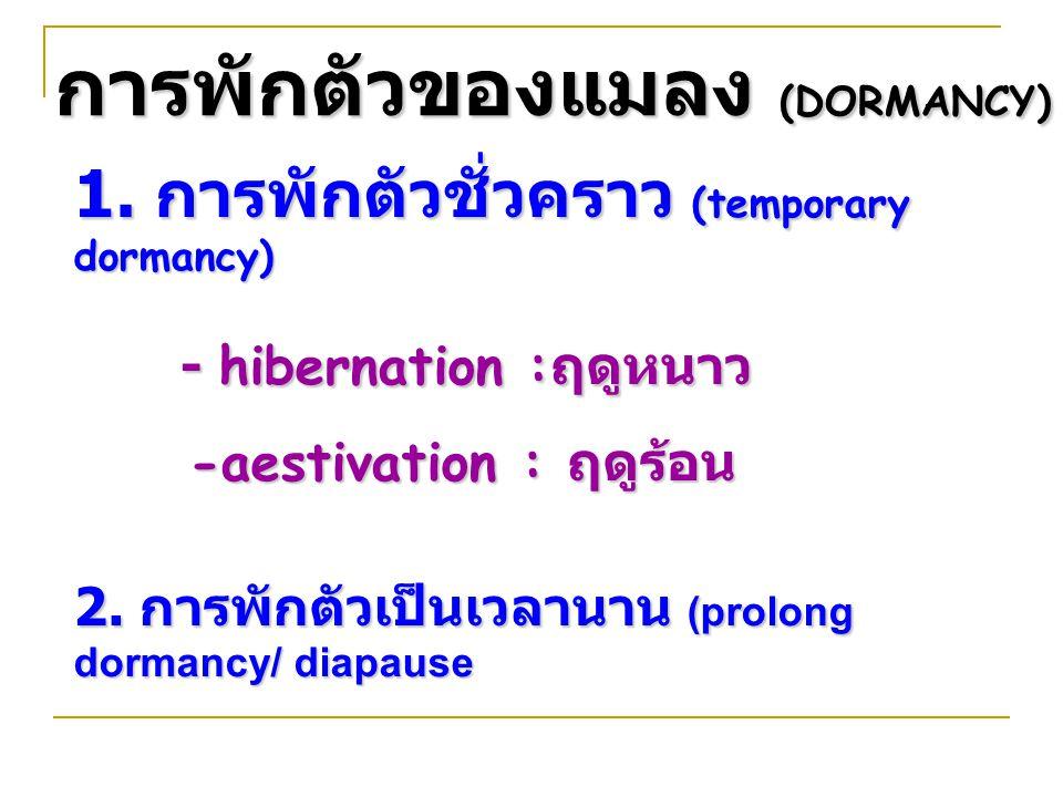 การพักตัวของแมลง (DORMANCY) 1. การพักตัวชั่วคราว (temporary dormancy) - hibernation : ฤดูหนาว -aestivation : ฤดูร้อน -aestivation : ฤดูร้อน 2. การพักต