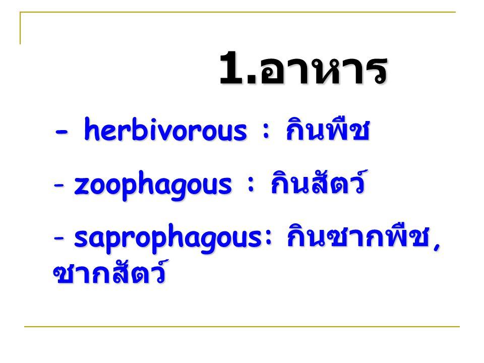 - herbivorous : กินพืช - zoophagous : กินสัตว์ - saprophagous: กินซากพืช, ซากสัตว์ 1. อาหาร