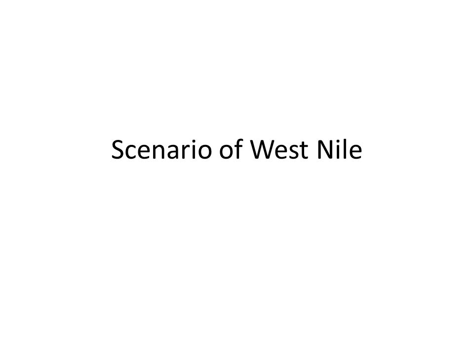 Scenario of West Nile
