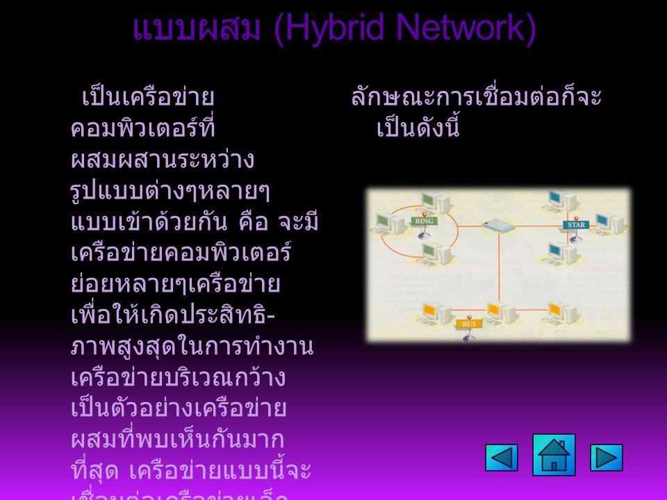 แบบผสม (Hybrid Network) เป็นเครือข่าย คอมพิวเตอร์ที่ ผสมผสานระหว่าง รูปแบบต่างๆหลายๆ แบบเข้าด้วยกัน คือ จะมี เครือข่ายคอมพิวเตอร์ ย่อยหลายๆเครือข่าย เพื่อให้เกิดประสิทธิ - ภาพสูงสุดในการทำงาน เครือข่ายบริเวณกว้าง เป็นตัวอย่างเครือข่าย ผสมที่พบเห็นกันมาก ที่สุด เครือข่ายแบบนี้จะ เชื่อมต่อเครือข่ายเล็ก - ใหญ่ หลากหลายแบบ เข้าด้วยกันเป็นเครือข่าย เดียว ซึ่งเครือข่ายที่ถูก เชื่อมต่ออาจจะอยู่ห่าง กันคนละจังหวัด หรือ อาจจะอยู่คนละประเทศ ก็เป็นได้ ลักษณะการเชื่อมต่อก็จะ เป็นดังนี้