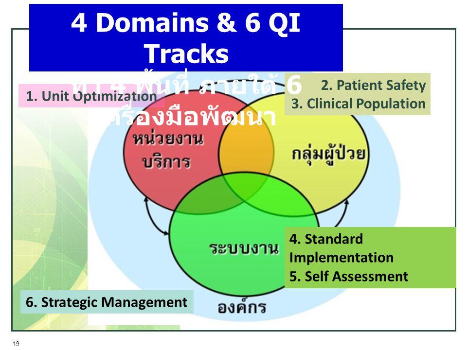 19 1. Unit Optimization 2. Patient Safety 3. Clinical Population 4. Standard Implementation 5. Self Assessment 6. Strategic Management 4 Domains & 6 Q