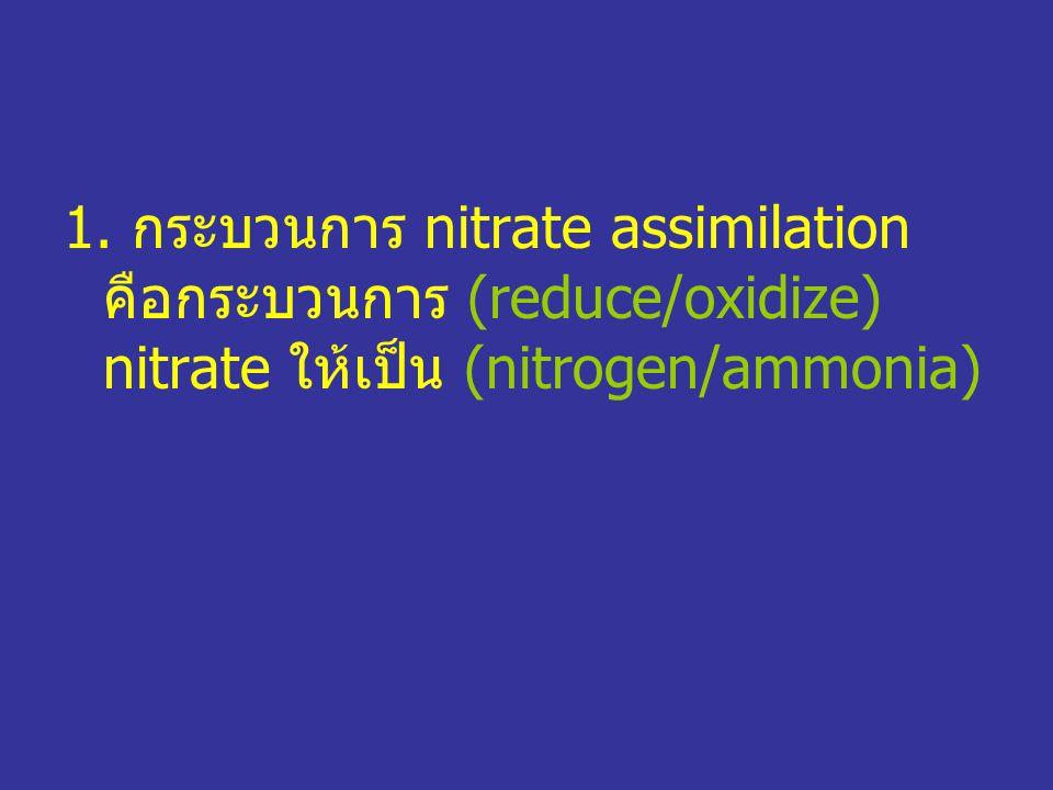 1. กระบวนการ nitrate assimilation คือกระบวนการ (reduce/oxidize) nitrate ให้เป็น (nitrogen/ammonia)