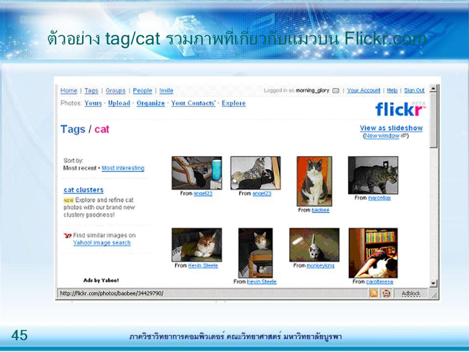 45 ตัวอย่าง tag/cat รวมภาพที่เกี่ยวกับแมวบน Flickr.com