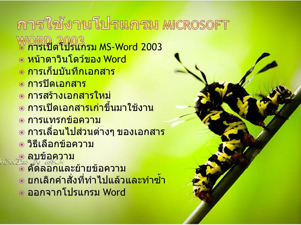  การเปิดโปรแกรม MS-Word 2003  หน้าตาวินโดว์ของ Word  การเก็บบันทึกเอกสาร  การปิดเอกสาร  การสร้างเอกสารใหม่  การเปิดเอกสารเก่าขึ้นมาใช้งาน  การแทรกข้อความ  การเลื่อนไปส่วนต่างๆ ของเอกสาร  วิธีเลือกข้อความ  ลบข้อความ  คัดลอกและย้ายข้อความ  ยกเลิกคำสั่งที่ทำไปแล้วและทำซ้ำ  ออกจากโปรแกรม Word
