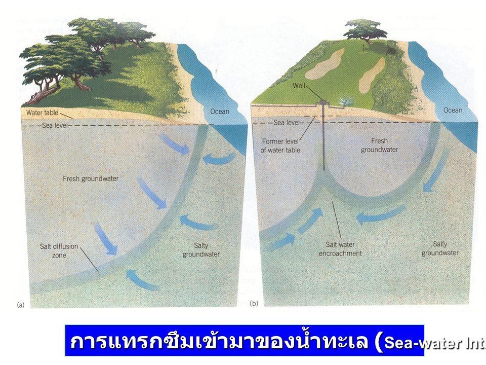 การแทรกซึมเข้ามาของน้ำทะเล ( Sea-water Intrusion )