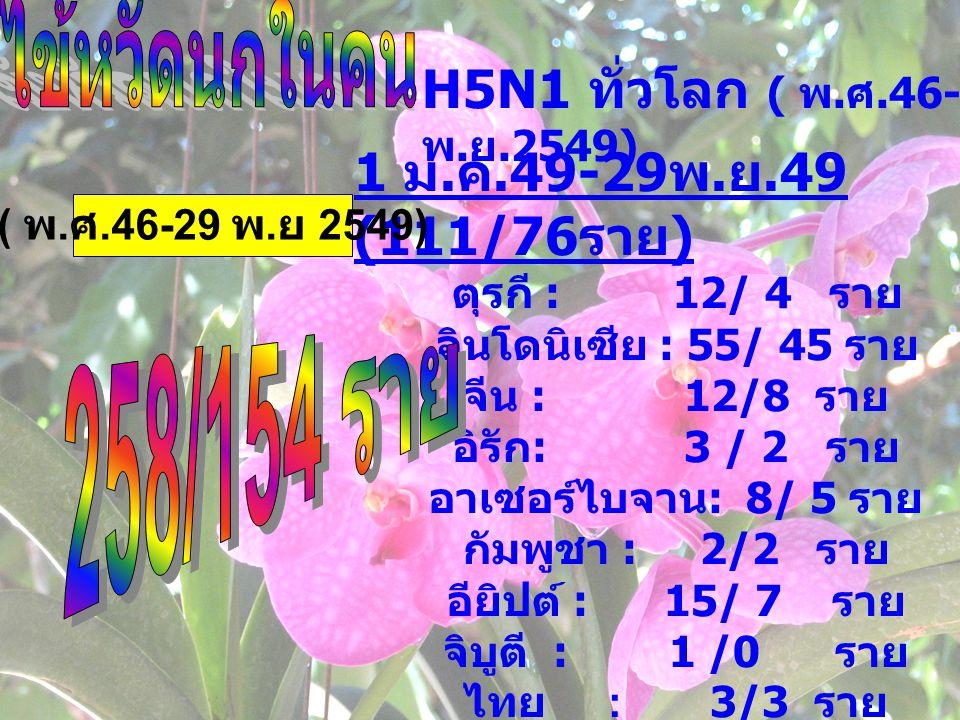 H5N1 ทั่วโลก ( พ. ศ.46-29 พ. ย.2549) 1 ม. ค.49-29 พ. ย.49 (111/76 ราย ) ตุรกี : 12/ 4 ราย อินโดนิเซีย : 55/ 45 ราย จีน : 12/8 ราย อิรัก : 3 / 2 ราย อา