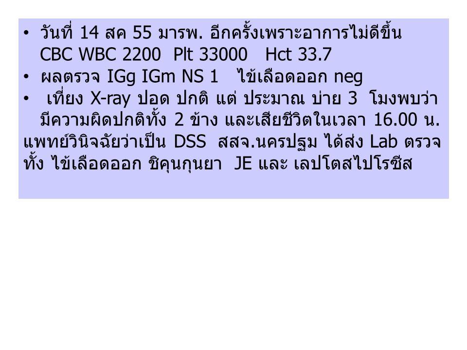 วันที่ 14 สค 55 มารพ. อีกครั้งเพราะอาการไม่ดีขึ้น CBC WBC 2200 Plt 33000 Hct 33.7 ผลตรวจ IGg IGm NS 1 ไข้เลือดออก neg เที่ยง X-ray ปอด ปกติ แต่ ประมาณ