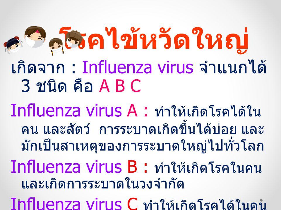 โรคไข้หวัดใหญ่ เกิดจาก : Influenza virus จำแนกได้ 3 ชนิด คือ A B C Influenza virus A : ทำให้เกิดโรคได้ใน คน และสัตว์ การระบาดเกิดขึ้นได้บ่อย และ มักเป็นสาเหตุของการระบาดใหญ่ไปทั่วโลก Influenza virus B : ทำให้เกิดโรคในคน และเกิดการระบาดในวงจำกัด Influenza virus C ทำให้เกิดโรคได้ในคน และไม่มีการระบาด