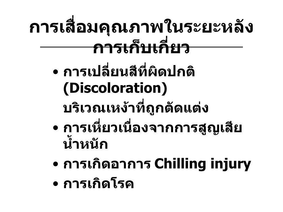 การเสื่อมคุณภาพในระยะหลัง การเก็บเกี่ยว การเปลี่ยนสีที่ผิดปกติ (Discoloration) บริเวณเหง้าที่ถูกตัดแต่ง การเหี่ยวเนื่องจากการสูญเสีย น้ำหนัก การเกิดอาการ Chilling injury การเกิดโรค
