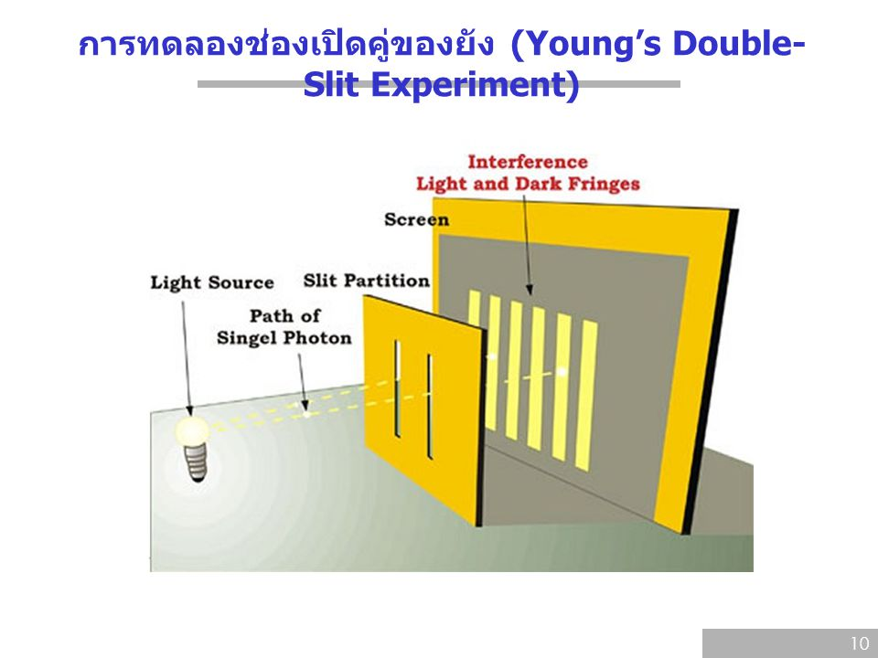 การทดลองช่องเปิดคู่ของยัง (Young's Double- Slit Experiment) 10