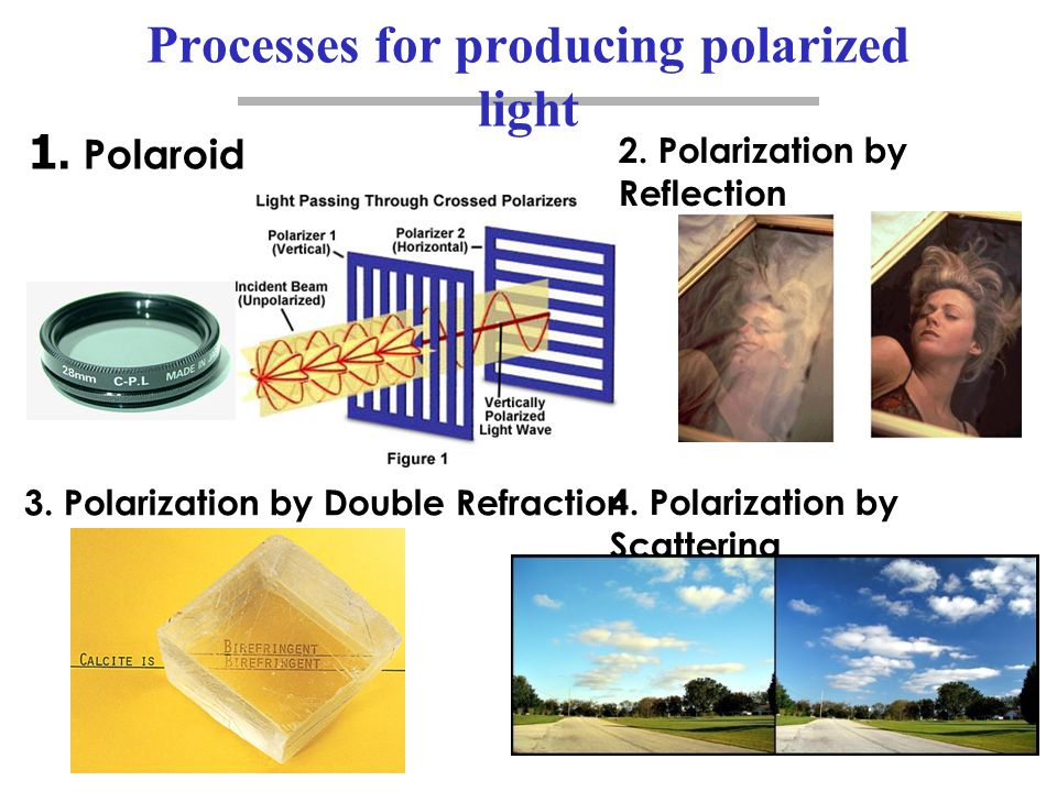 Processes for producing polarized light 1. Polaroid 2. Polarization by Reflection 3. Polarization by Double Refraction 4. Polarization by Scattering