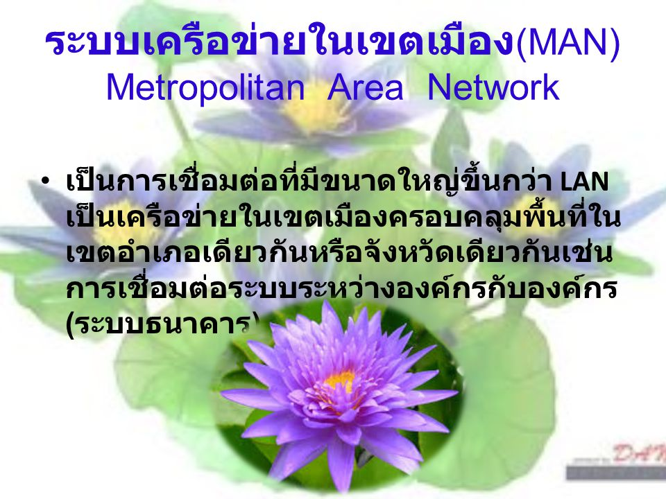 ระบบเครือข่ายในเขตเมือง (MAN) Metropolitan Area Network เป็นการเชื่อมต่อที่มีขนาดใหญ่ขึ้นกว่า LAN เป็นเครือข่ายในเขตเมืองครอบคลุมพื้นที่ใน เขตอำเภอเดี