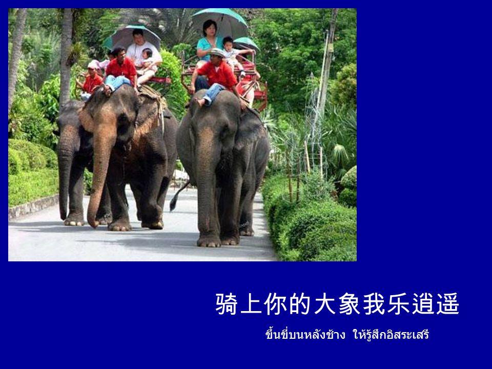 ประเทศไทย เธอสบายดีหรือ ประเทศไทย เธอสบายดีหรือเปล่า 泰国你好,泰国你好