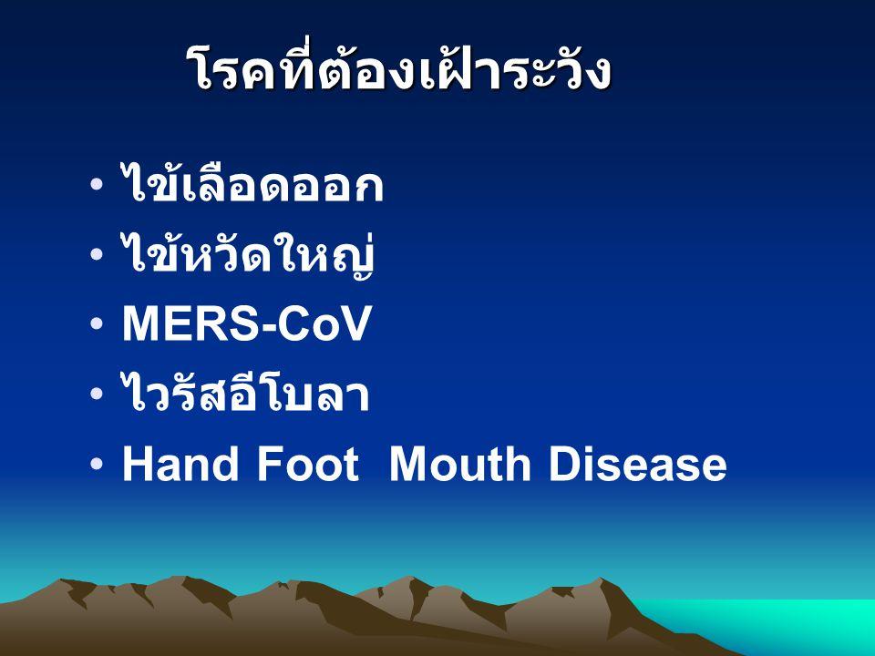 โรคที่ต้องเฝ้าระวัง ไข้เลือดออก ไข้หวัดใหญ่ MERS-CoV ไวรัสอีโบลา Hand Foot Mouth Disease