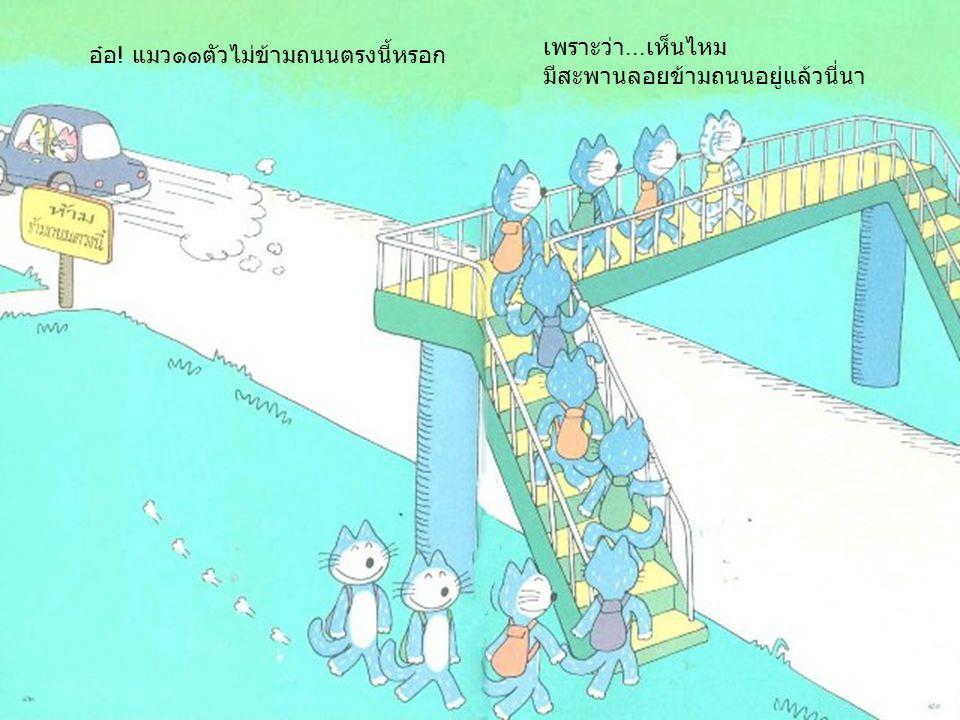 อ๋อ ! แมว๑๑ตัวไม่ข้ามถนนตรงนี้หรอก เพราะว่า... เห็นไหม มีสะพานลอยข้ามถนนอยู่แล้วนี่นา