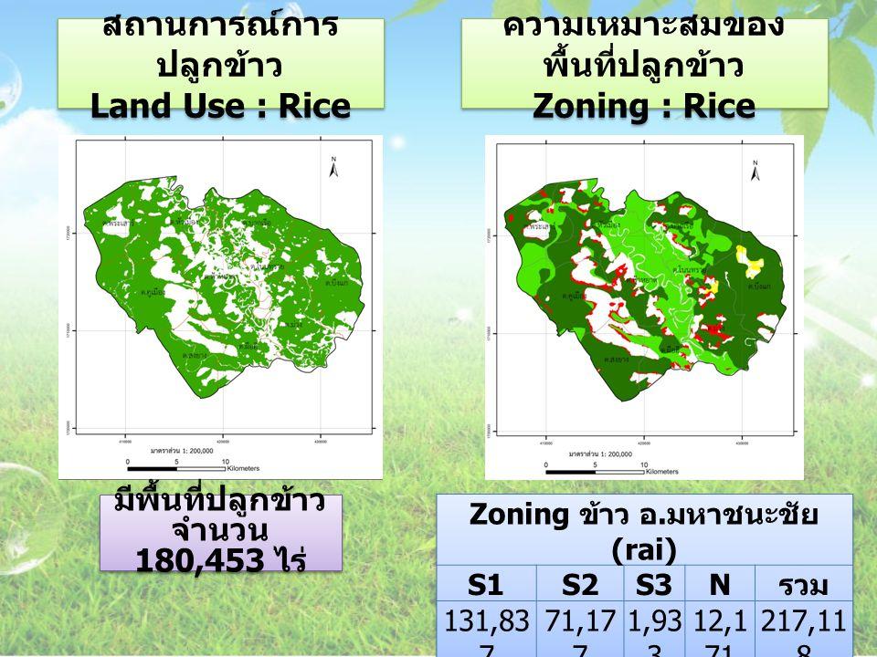 สถานการณ์การ ปลูกข้าว Land Use : Rice ความเหมาะสมของ พื้นที่ปลูกข้าว Zoning : Rice ความเหมาะสมของ พื้นที่ปลูกข้าว Zoning : Rice มีพื้นที่ปลูกข้าว จำนว