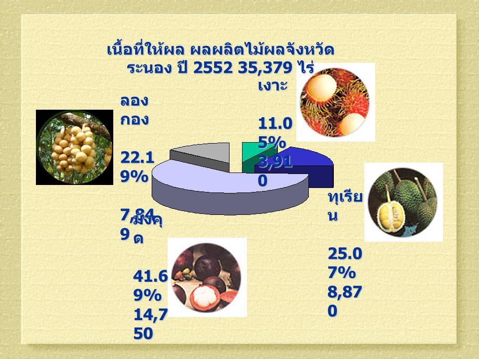 เนื้อที่ให้ผล ผลผลิตไม้ผลจังหวัด ระนอง ปี 2552 35,379 ไร่ ลอง กอง 22.1 9% 22.1 9% 7,84 9 7,84 9 ทุเรีย น 25.0 7% 25.0 7% 8,87 0 มังคุ ด 41.6 9% 41.6 9