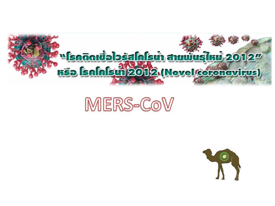 เป็น Novel Coronavirus พบครั้งแรก เม.ย.