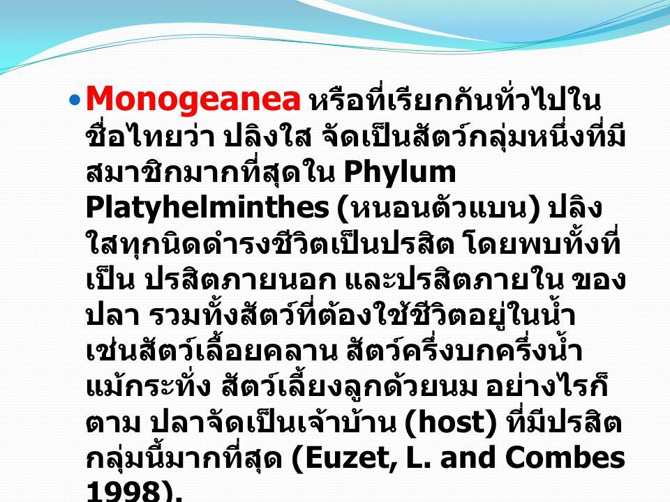Monogeanea หรือที่เรียกกันทั่วไปใน ชื่อไทยว่า ปลิงใส จัดเป็นสัตว์กลุ่มหนึ่งที่มี สมาชิกมากที่สุดใน Phylum Platyhelminthes ( หนอนตัวแบน ) ปลิง ใสทุกนิดดำรงชีวิตเป็นปรสิต โดยพบทั้งที่ เป็น ปรสิตภายนอก และปรสิตภายใน ของ ปลา รวมทั้งสัตว์ที่ต้องใช้ชีวิตอยู่ในน้ำ เช่นสัตว์เลื้อยคลาน สัตว์ครึ่งบกครึ่งน้ำ แม้กระทั่ง สัตว์เลี้ยงลูกด้วยนม อย่างไรก็ ตาม ปลาจัดเป็นเจ้าบ้าน (host) ที่มีปรสิต กลุ่มนี้มากที่สุด (Euzet, L.
