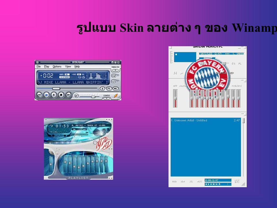 รูปแบบ Skin ลายต่าง ๆ ของ Winamp