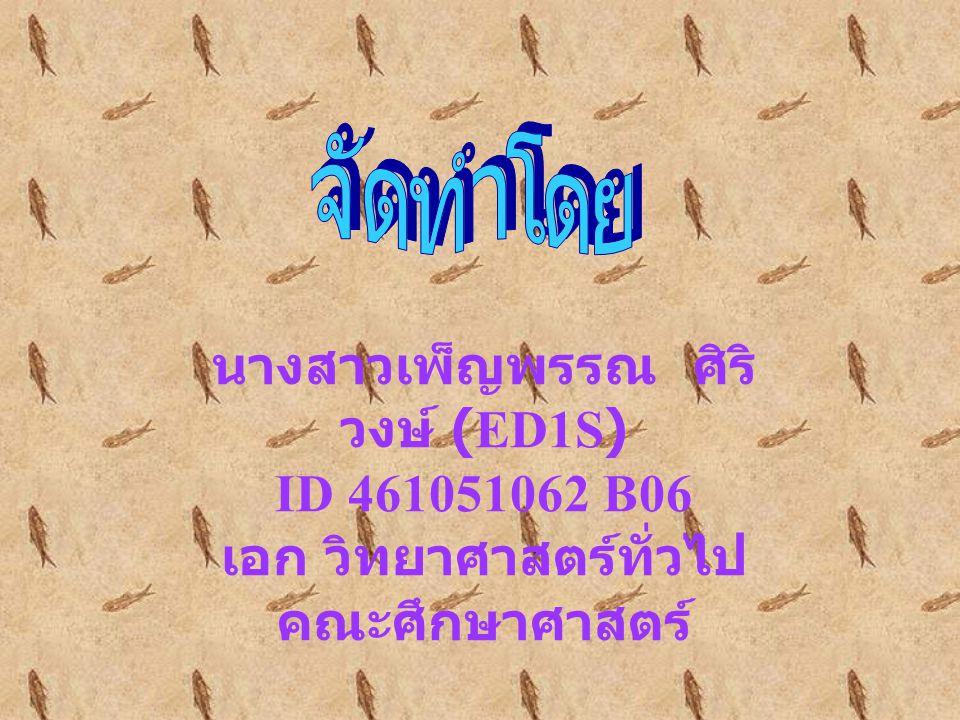 www.softwarepark.co.th/itcenter เพ็ญพรรณ ศิริวงษ์ ED1S ID 461051062 B06