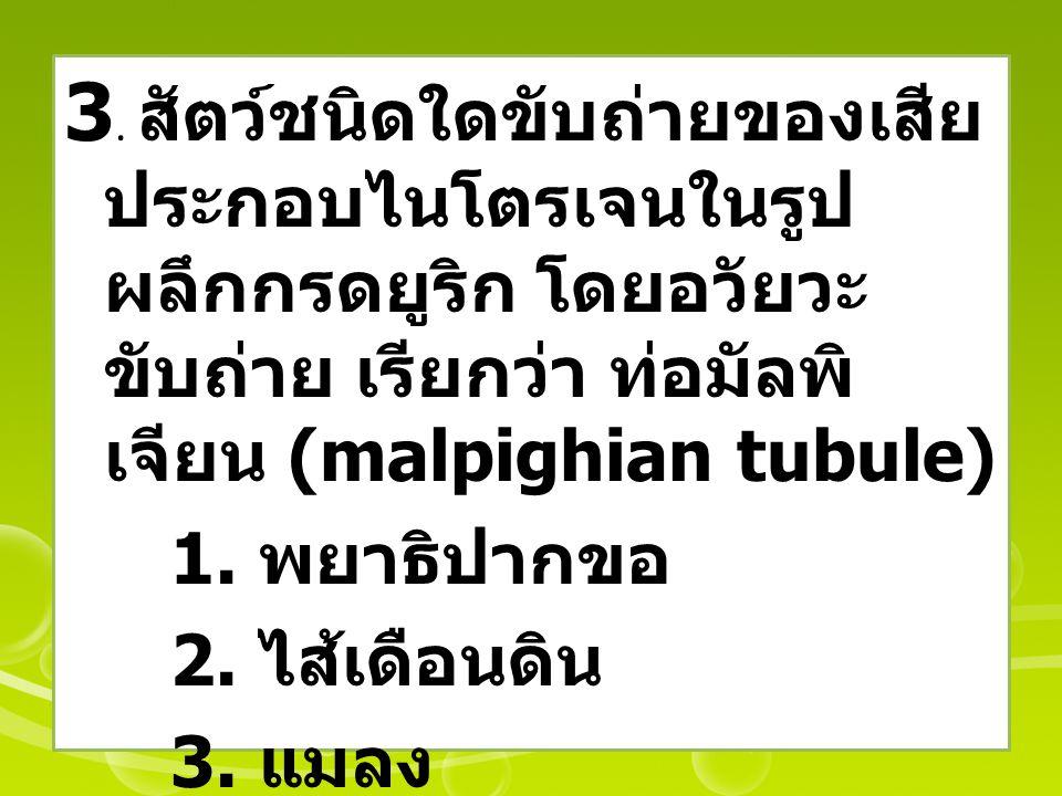 3. สัตว์ชนิดใดขับถ่ายของเสีย ประกอบไนโตรเจนในรูป ผลึกกรดยูริก โดยอวัยวะ ขับถ่าย เรียกว่า ท่อมัลพิ เจียน (malpighian tubule) 1. พยาธิปากขอ 2. ไส้เดือนด