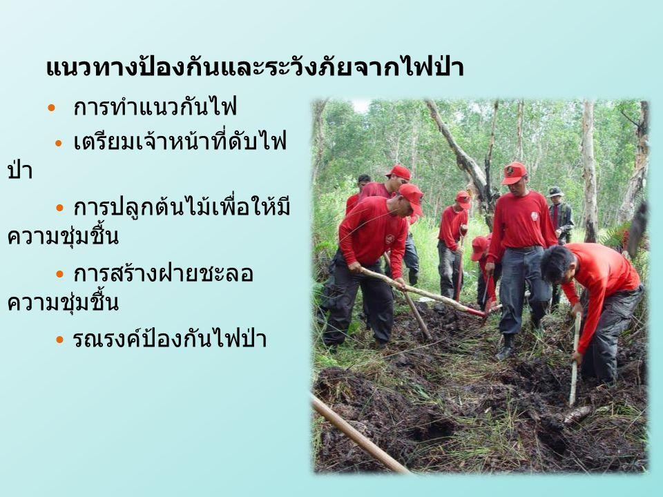 การทำแนวกันไฟ เตรียมเจ้าหน้าที่ดับไฟ ป่า การปลูกต้นไม้เพื่อให้มี ความชุ่มชื้น การสร้างฝายชะลอ ความชุ่มชื้น รณรงค์ป้องกันไฟป่า แนวทางป้องกันและระวังภัยจากไฟป่า