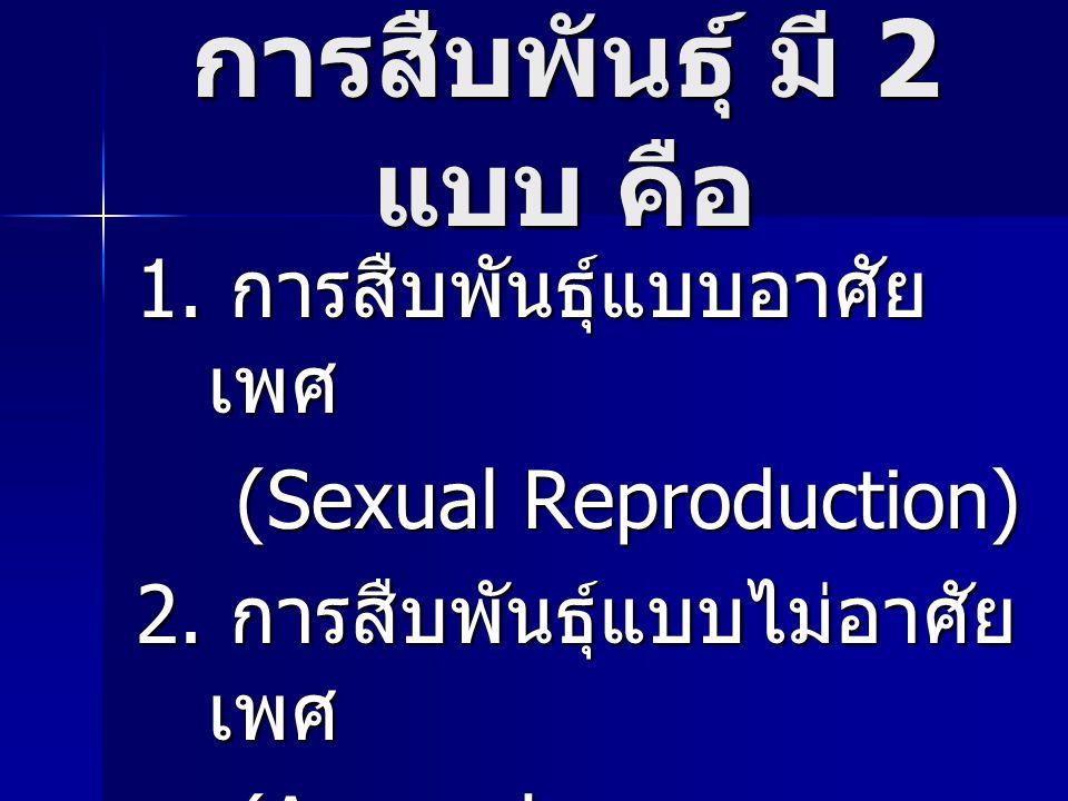 การสืบพันธุ์ มี 2 แบบ คือ 1. การสืบพันธุ์แบบอาศัย เพศ (Sexual Reproduction) (Sexual Reproduction) 2. การสืบพันธุ์แบบไม่อาศัย เพศ (Asexual Reproduction