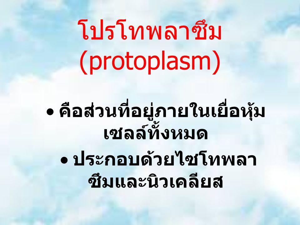 โปรโทพลาซึม (protoplasm)  คือส่วนที่อยู่ภายในเยื่อหุ้ม เซลล์ทั้งหมด  ประกอบด้วยไซโทพลา ซึมและนิวเคลียส