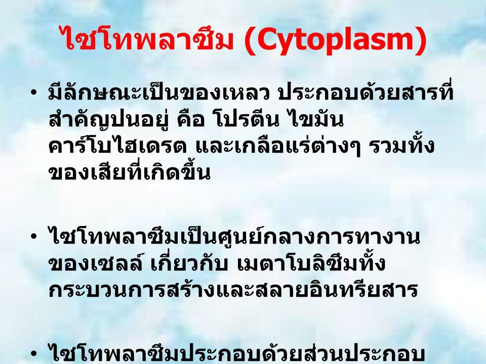 ไซโทพลาซึม (Cytoplasm) มีลักษณะเป็นของเหลว ประกอบด้วยสารที่ สำคัญปนอยู่ คือ โปรตีน ไขมัน คาร์โบไฮเดรต และเกลือแร่ต่างๆ รวมทั้ง ของเสียที่เกิดขึ้น ไซโทพลาซึมเป็นศูนย์กลางการทางาน ของเซลล์ เกี่ยวกับ เมตาโบลิซึมทั้ง กระบวนการสร้างและสลายอินทรียสาร ไซโทพลาซึมประกอบด้วยส่วนประกอบ ภายในที่อาจเรียกว่า อวัยวะของเซลล์