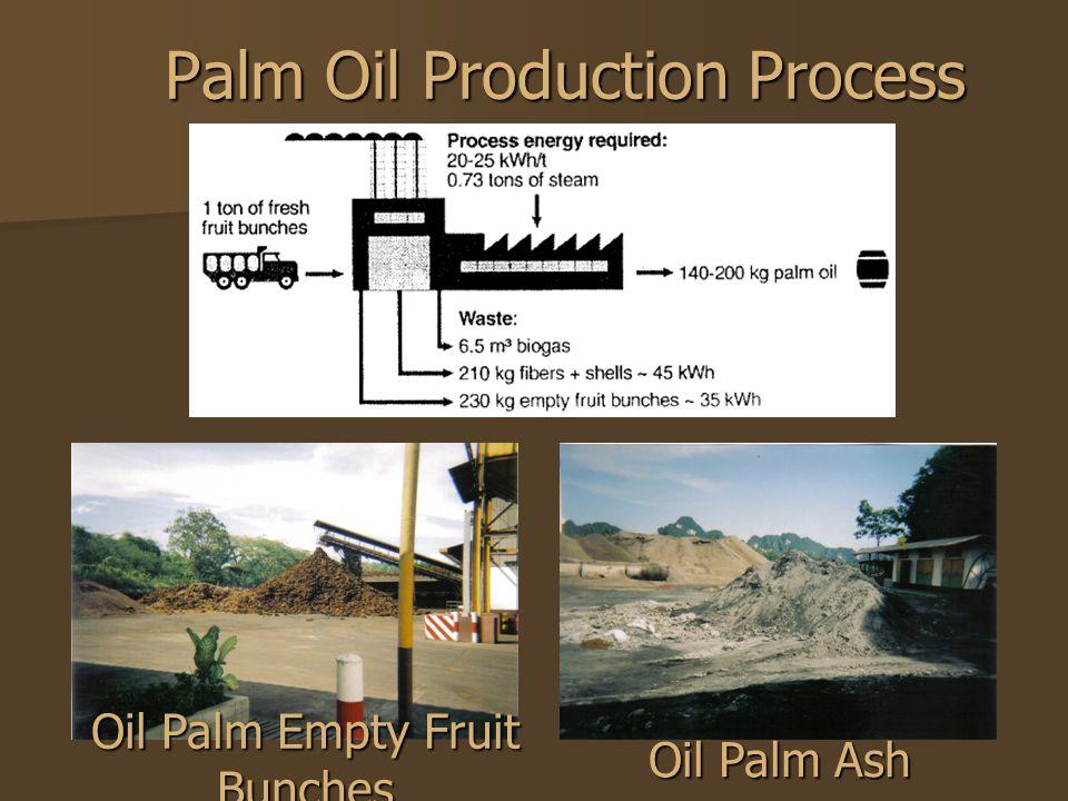 Palm Oil Production Process Palm Oil Production Process Oil Palm Empty Fruit Bunches Oil Palm Ash