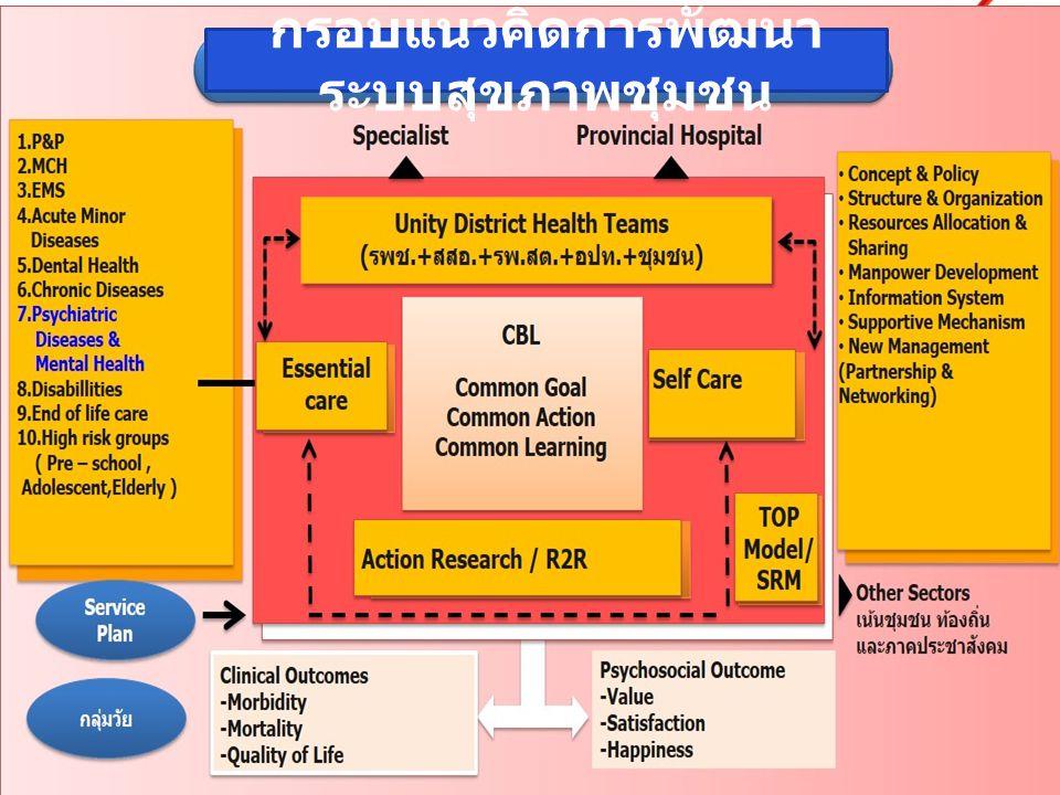 กำหนดนโยบาย/มาตรการสำคัญของงานสุขภาพจิต กำหนดมาตรฐานการดำเนินงานสุขภาพจิต สร้างและพัฒนาองค์ความรู้ เทคโนโลยี เครื่องมือ สุขภาพจิต สนับสนุนให้เกิดการวิเคราะห์เชื่อมโยงระหว่าง ประเด็นสุขภาพทางกายกับมาตรการทางสุขภาพจิต สนับสนุนทางวิชาการให้กับเครือข่ายในพื้นที่ กำกับ ติดตามการดำเนินงานสุขภาพจิต