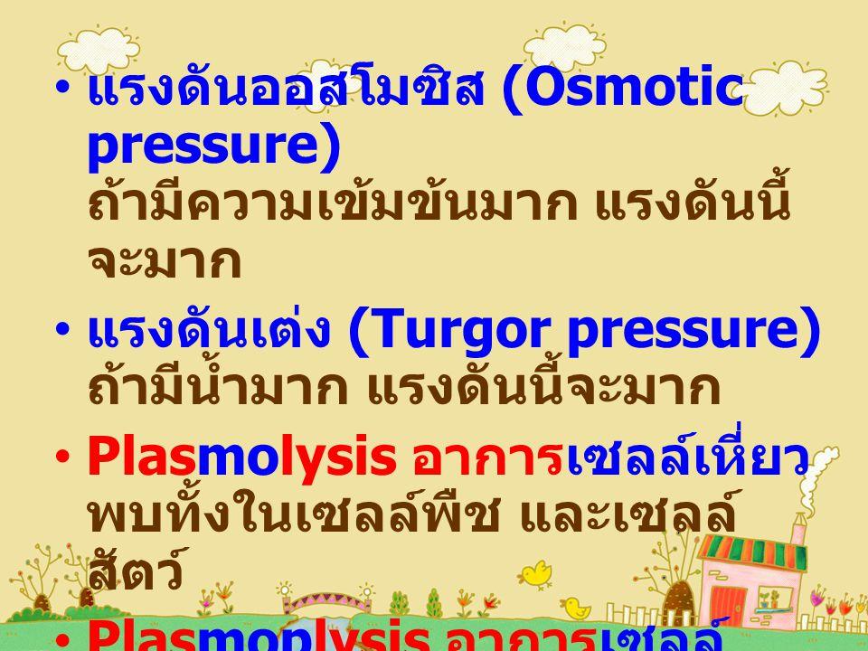 แรงดันออสโมซิส (Osmotic pressure) ถ้ามีความเข้มข้นมาก แรงดันนี้ จะมาก แรงดันเต่ง (Turgor pressure) ถ้ามีน้ำมาก แรงดันนี้จะมาก Plasmolysis อาการเซลล์เหี่ยว พบทั้งในเซลล์พืช และเซลล์ สัตว์ Plasmoplysis อาการเซลล์ แตก ไม่พบในเซลล์พืช เพราะมีผนังเซลล์แข็งแรง