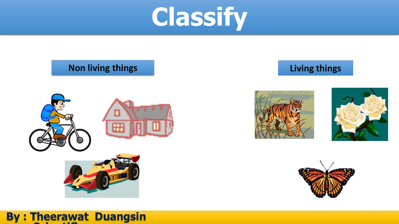 Classify By : Theerawat Duangsin Scientific process By : Theerawat Duangsin Scientific process Non living things Living things
