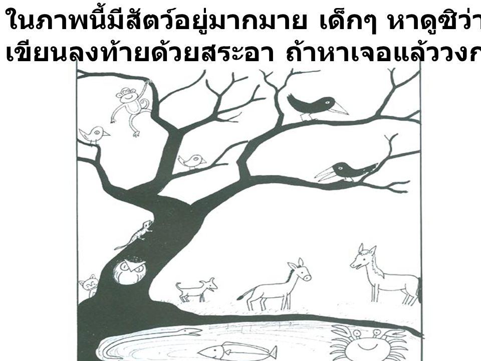 ในภาพนี้มีสัตว์อยู่มากมาย เด็กๆ หาดูซิว่าสัตว์ตัวใดที่มีชื่อ เขียนลงท้ายด้วยสระอา ถ้าหาเจอแล้ววงกลมล้อมรอบไว้เลย