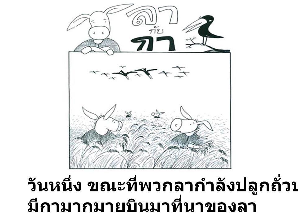 วันหนึ่ง ขณะที่พวกลากำลังปลูกถั่วปลูกงาอยู่ในนา มีกามากมายบินมาที่นาของลา