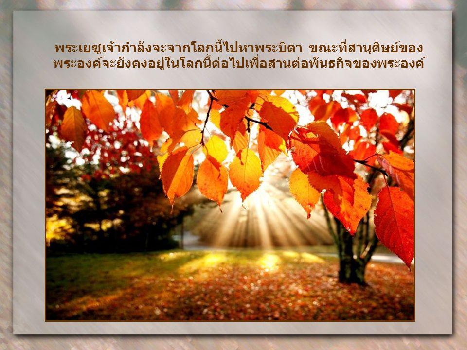 แม้ก่อนหน้านั้น ชัยชนะของพระองค์เป็นกิจการของความรักที่ ยิ่งใหญ่ในการมอบชีวิตของพระองค์เพื่อเรา ในความพ่ายแพ้ พระองค์ทรงมีชัยชนะอย่างเต็มเปี่ยม