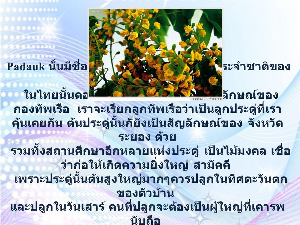 Hibiscus มีชื่อไทยที่สง่างามว่า ชบา ชบา เป็นดอกไม้ประจำชาติของ ประเทศมาเลเซีย ชบา และ พู่ระหง ก็เป็นไม้มงคลอีกชนิด เชื่อกันว่าจะช่วย ส่งเสริมให้สูงส่ง และ สง่างาม ดั่งพู่ระหงแก่ผู้อยู่อาศัย ทิศเหมาะสมคือตะวันตกเฉียงเหนือของตัวบ้าน ใครปลูกก็ได้ แต่ควรปลูกวันพุธ
