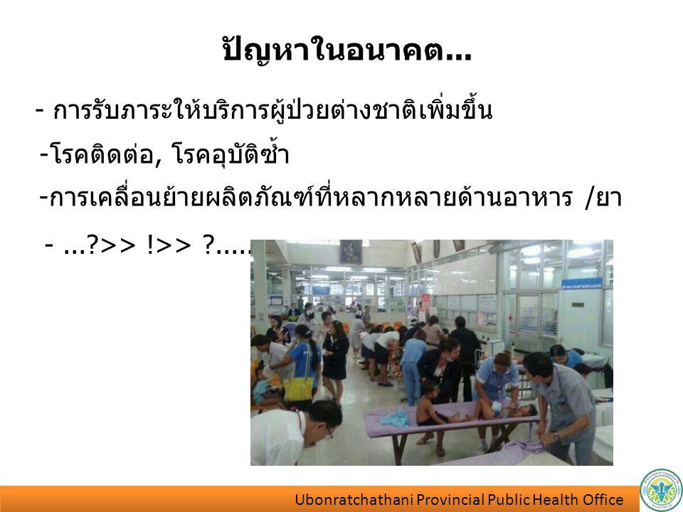 ปัญหาในอนาคต... - การรับภาระให้บริการผู้ป่วยต่างชาติเพิ่มขึ้น -โรคติดต่อ, โรคอุบัติซ้ำ -การเคลื่อนย้ายผลิตภัณฑ์ที่หลากหลายด้านอาหาร /ยา -...?>> !>> ?.