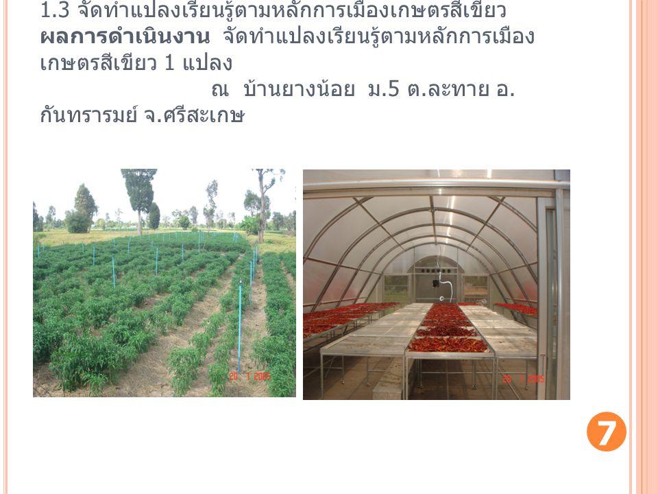 1.3 จัดทำแปลงเรียนรู้ตามหลักการเมืองเกษตรสีเขียว ผลการดำเนินงาน จัดทำแปลงเรียนรู้ตามหลักการเมือง เกษตรสีเขียว 1 แปลง ณ บ้านยางน้อย ม.5 ต. ละทาย อ. กัน