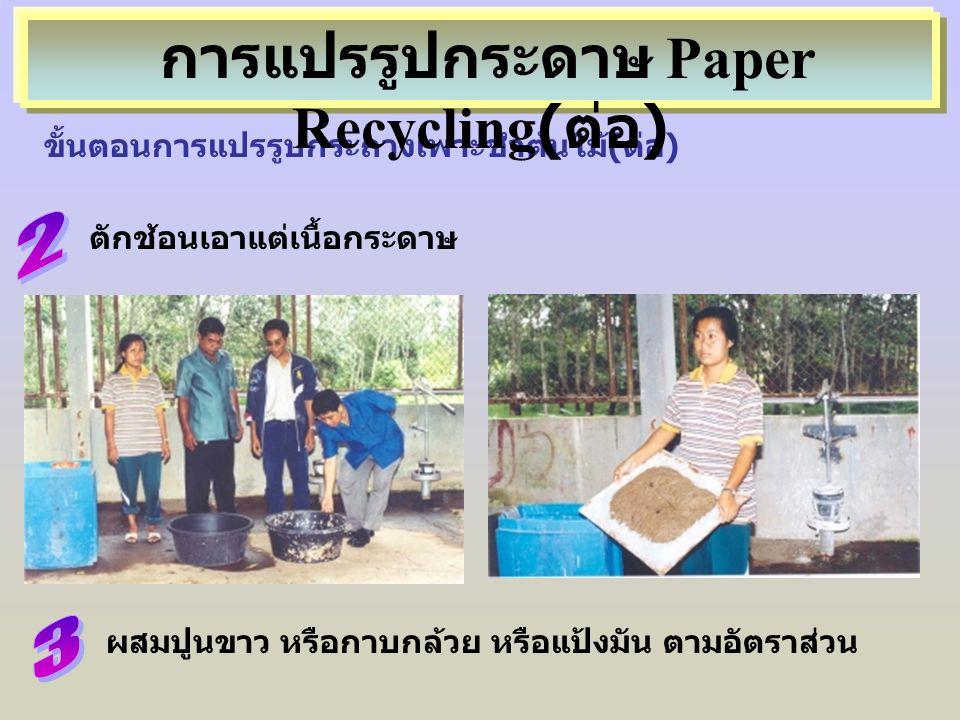 ขั้นตอนการแปรรูปกระถางเพาะชำต้นไม้(ต่อ) ตักช้อนเอาแต่เนื้อกระดาษ การแปรรูปกระดาษ Paper Recycling( ต่อ ) ผสมปูนขาว หรือกาบกล้วย หรือแป้งมัน ตามอัตราส่ว