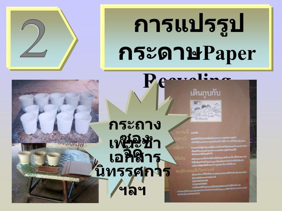 การแปรรูป กระดาษ Paper Recycling กระถาง เพาะชำ ซอง เอกสาร จัด นิทรรศการ ฯลฯ