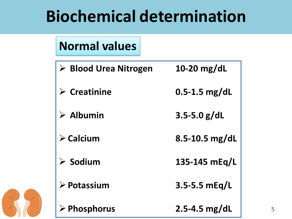 Biochemical determination 5  Blood Urea Nitrogen 10-20 mg/dL  Creatinine 0.5-1.5 mg/dL  Albumin 3.5-5.0 g/dL  Calcium8.5-10.5 mg/dL  Sodium 135-1