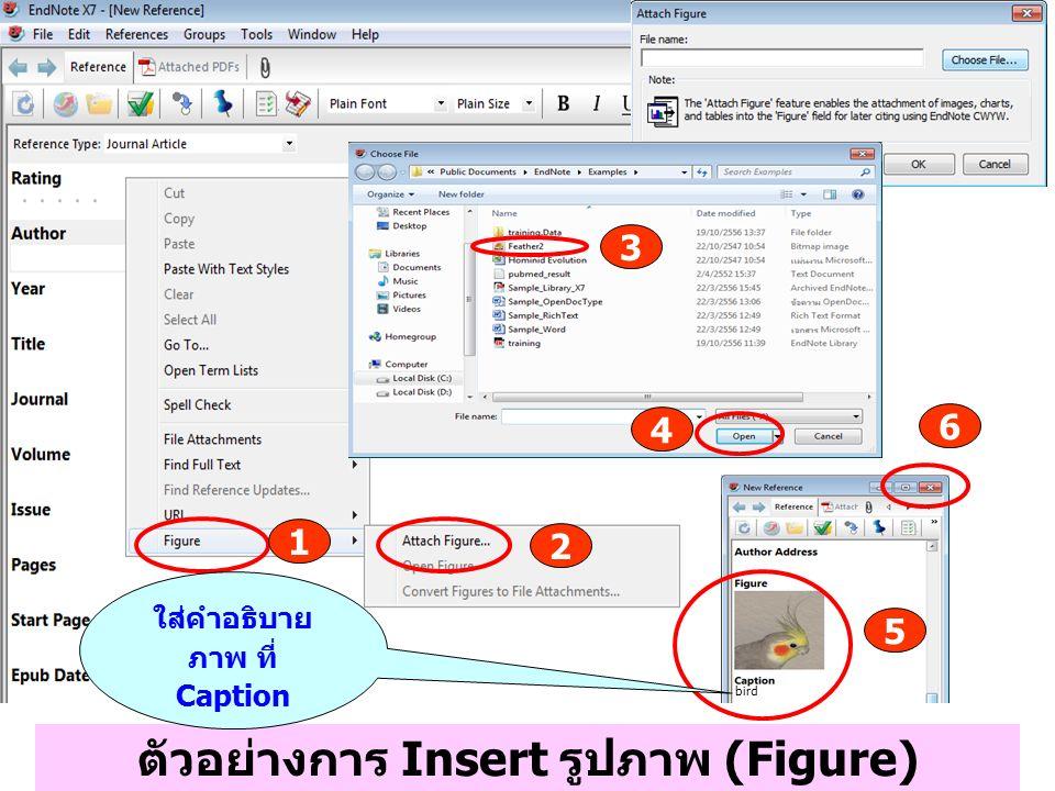 ตัวอย่างการ Insert รูปภาพ (Figure) 1 2 3 4 5 6 ใส่คำอธิบาย ภาพ ที่ Caption bird