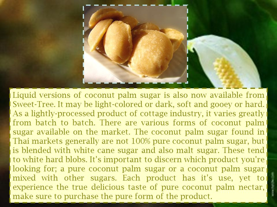 Liquid versions of coconut palm sugar is also now available from Sweet-Tree.